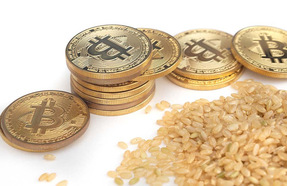 玄米とビットコインの出会い