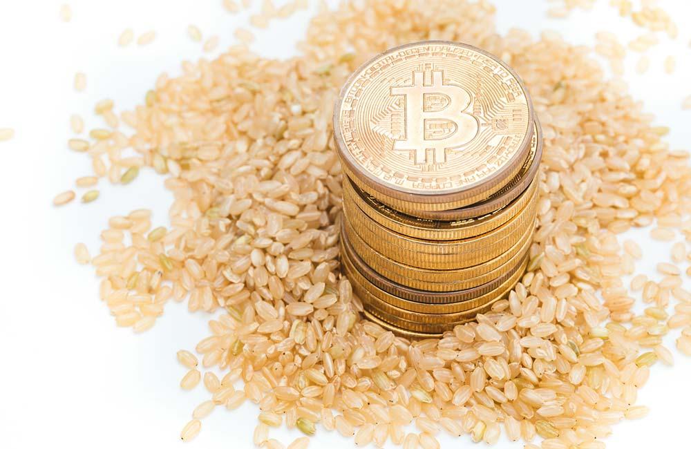 玄米と仮想通貨の玄米婚